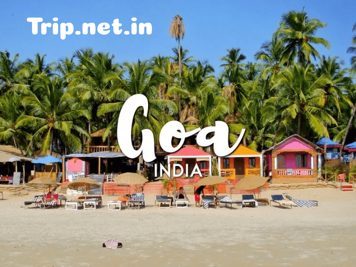 Goa Tour Packages, trichy to goa tour package, trichy to goa flight ticket price, goa tour package from coimbatore, madurai to goa tour packages, chandigarh to goa train tour package, nepal to goa tour package price, goa tour package from bhubaneswar, goa tour packages from rajkot, ahmedabad to goa tour packages by bus